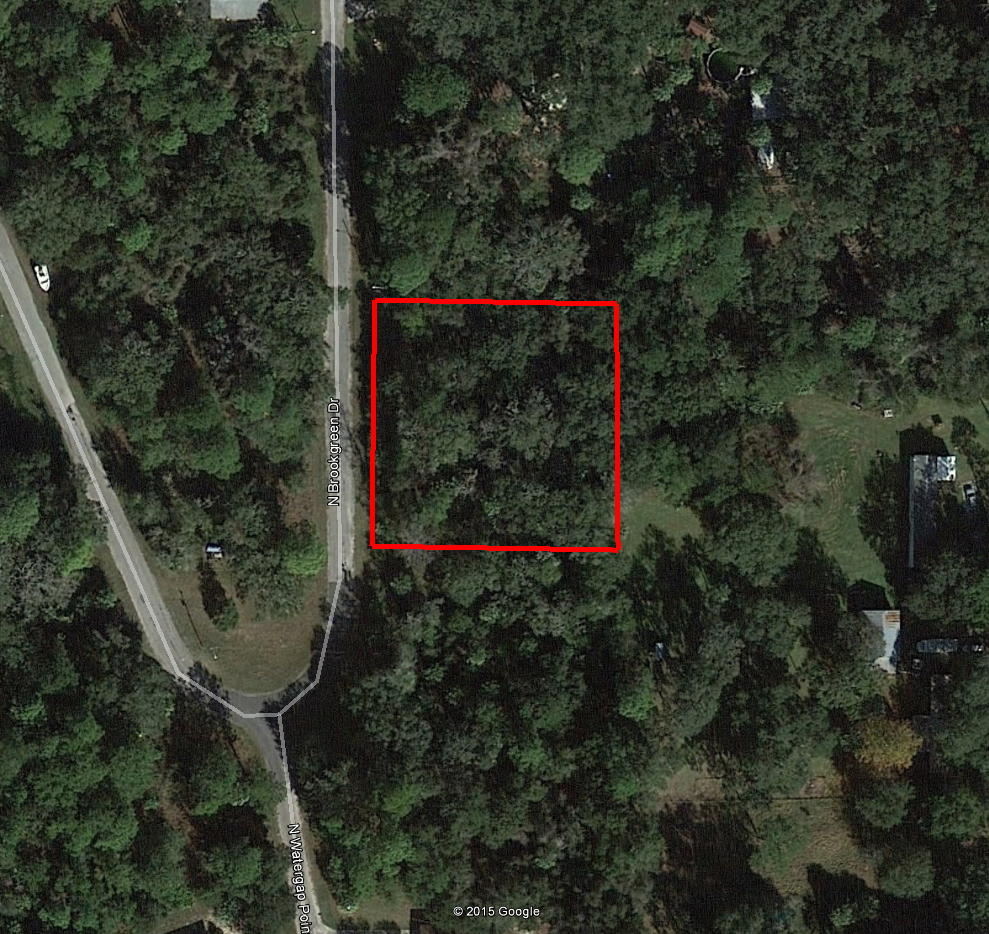 Beautiful Residential Lot in Crystal River - Image 1