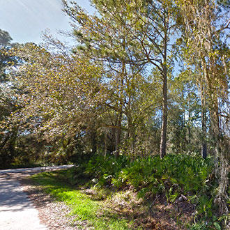 Great Corner Lot in East Palatka Florida - Image 3
