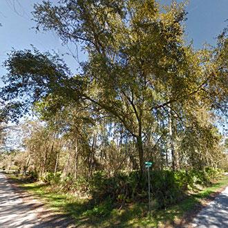 Great Corner Lot in East Palatka Florida - Image 3