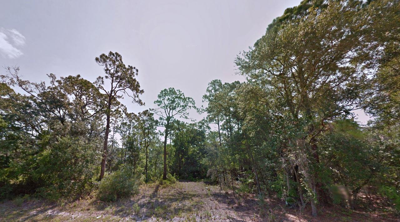 Property on Canal Way Near Wolf Lake - Image 3