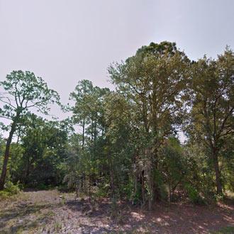 Property on Canal Way Near Wolf Lake - Image 1