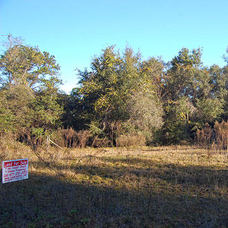 Lot in Interlachen with Well and Septic - Image 1