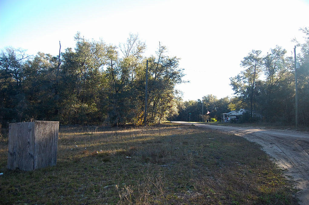 Lot in Interlachen with Well and Septic - Image 3