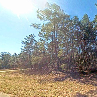 Half Acre Property in Private Location - Image 1