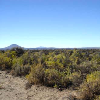 20 Acre Parcel Less than 11 Miles West of Christmas Valley - Image 1