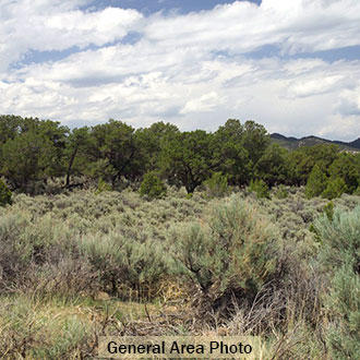 Beautiful 5+ Acres in San Luis Valley of Southern Colorado - Image 1