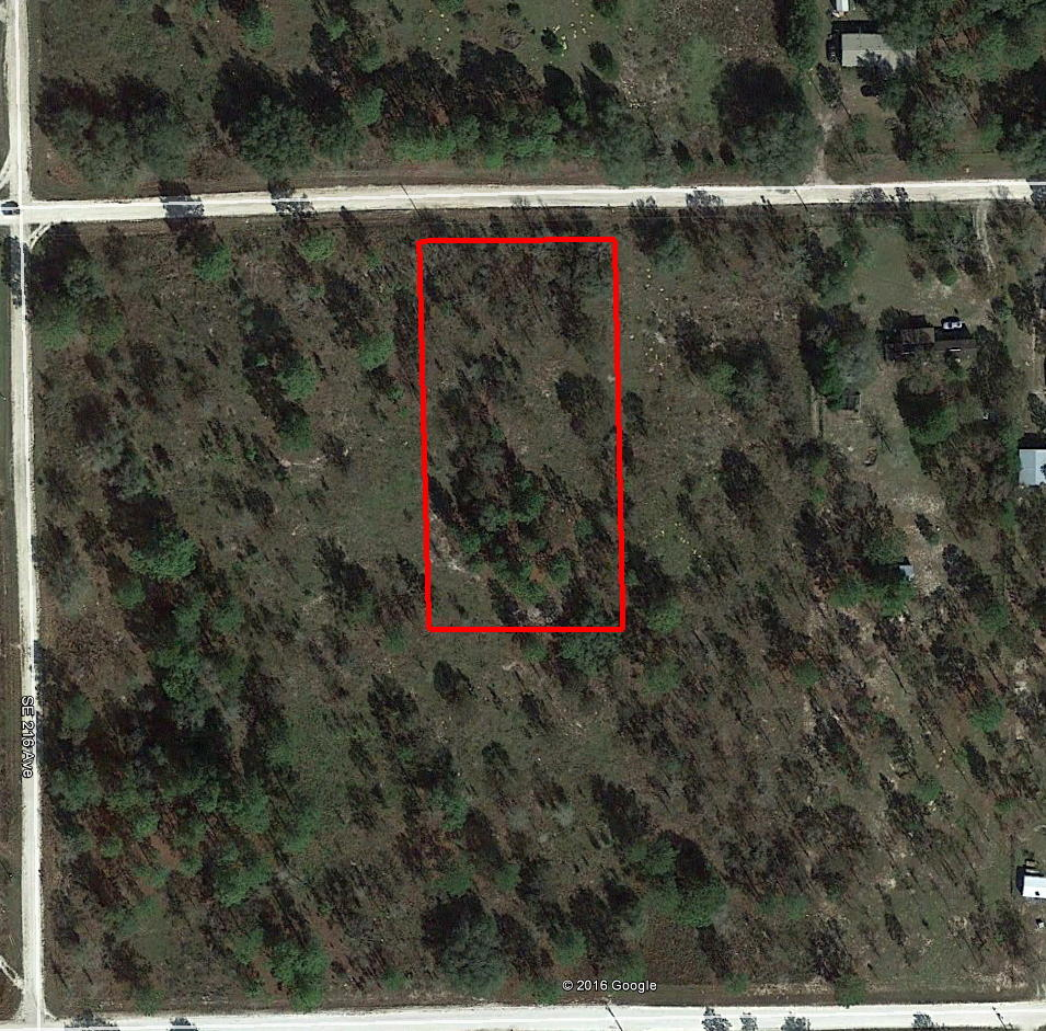 One and a Quarter Acre Lot in Morriston, Florida With Great Access - Image 2