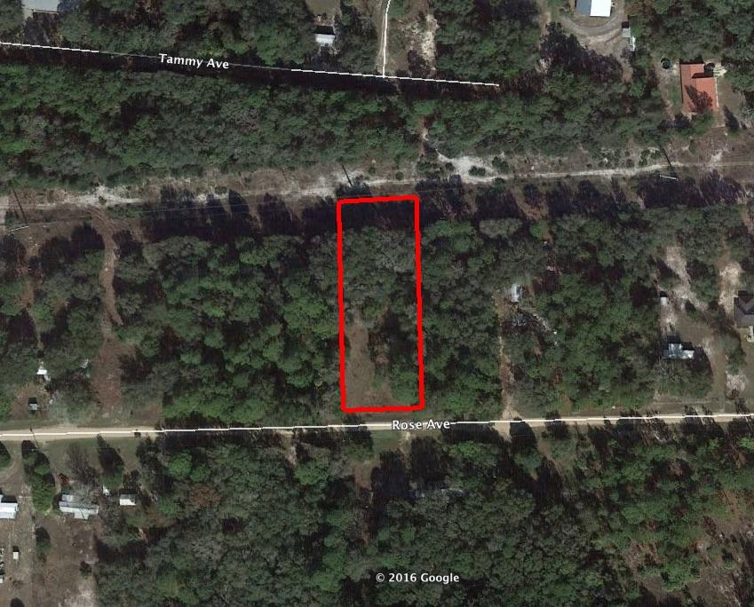 One Acre Heavily Treed Acre - Image 1