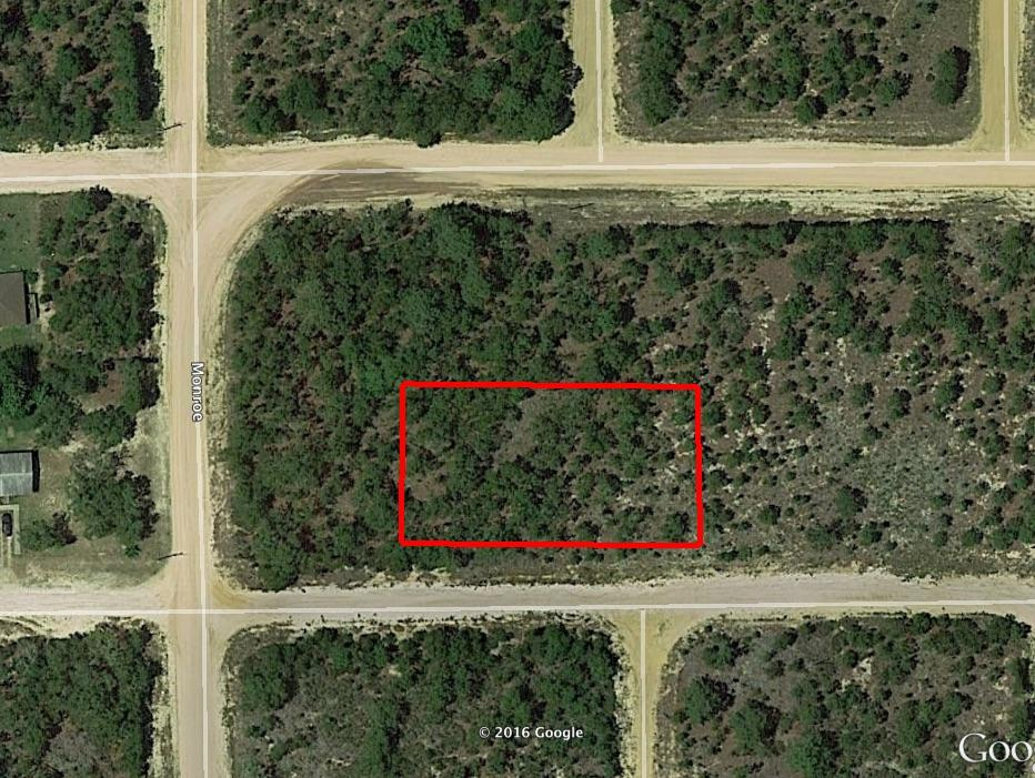 Half Acre Lot in Orange Blossom Manor - Image 2