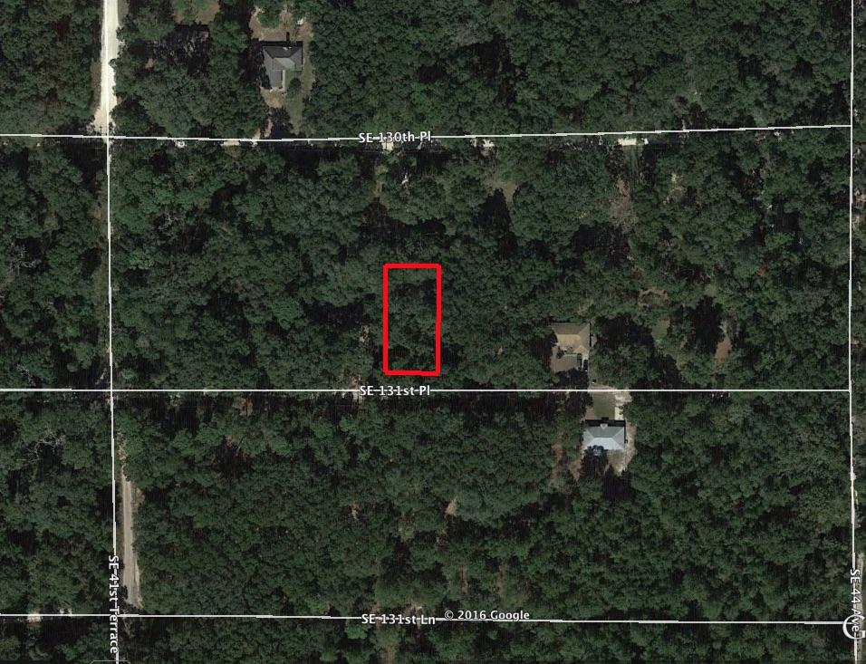 Home Sized Lot in Bellview - Image 1