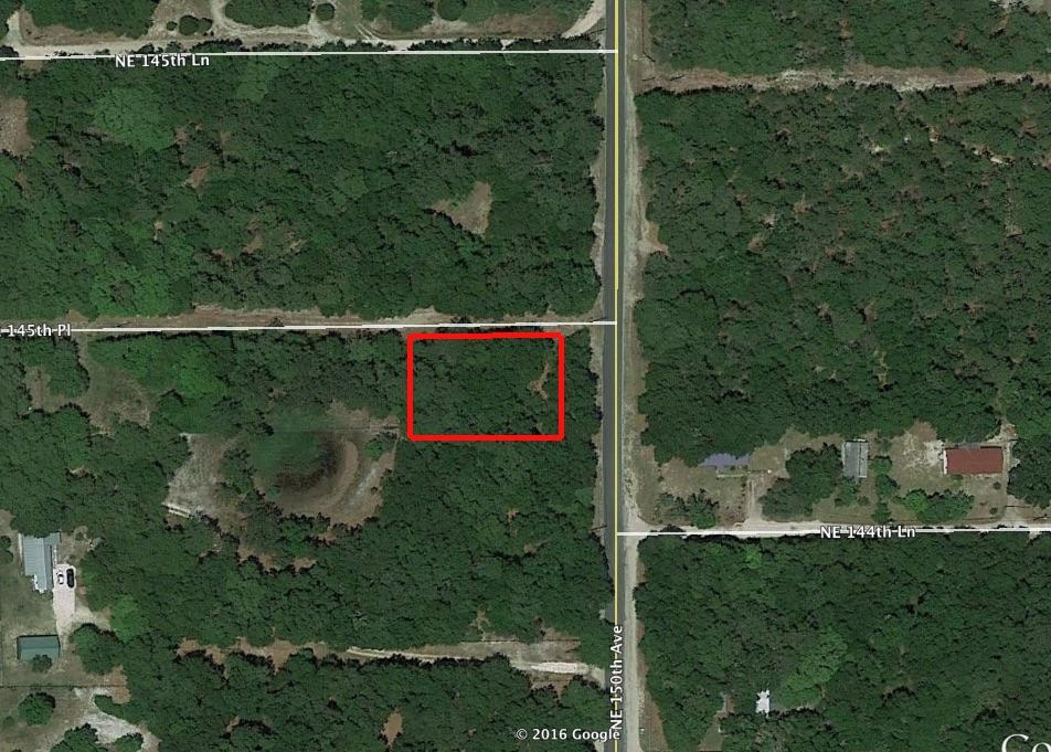 Quiet Treed Corner Lot in Fort McCoy - Image 2