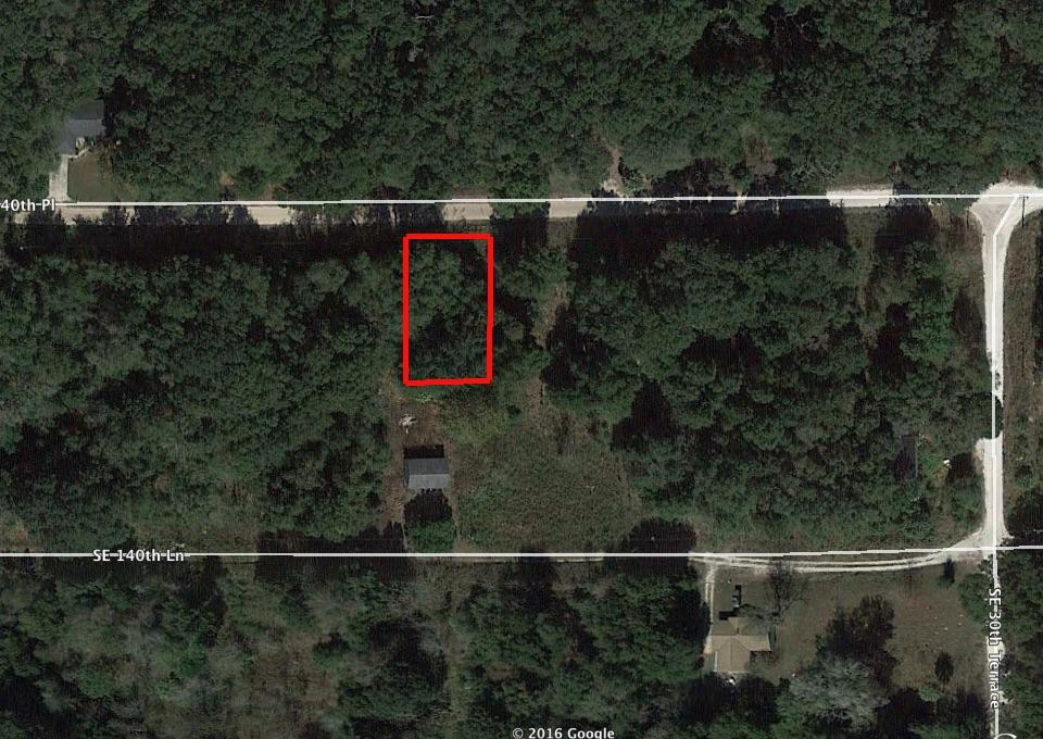 Treed Property in Belleview Heights Estates in Summerfield - Image 2