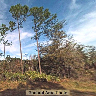 Almost a Quarter Acre on Domingo Road - Image 2