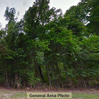 Treed Lot Close to Sugarbowl Lake in Satsuma - Image 2