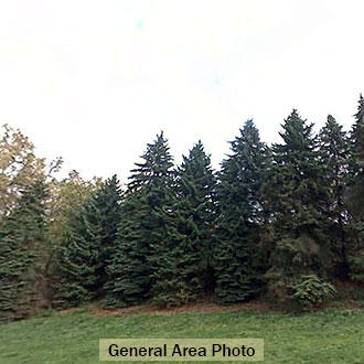 Property in Monessen in Southern Pennsylvania - Image 0