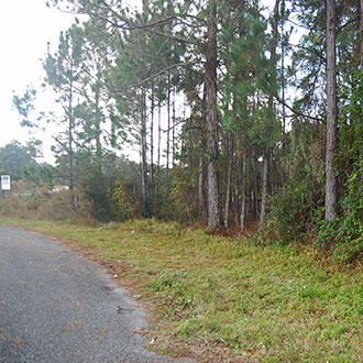 Lot On W Lake Drive In Deland FL - Image 3