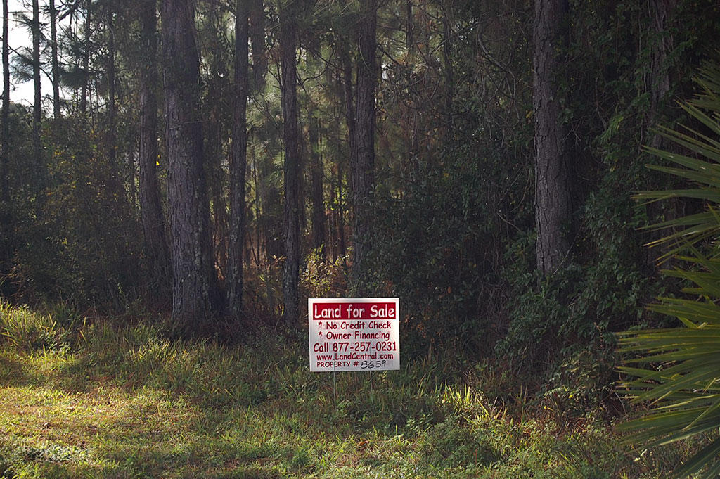 Lot On W Lake Drive In Deland FL - Image 5