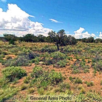 Large acreage parcel with Agricultural Zoning - Image 1