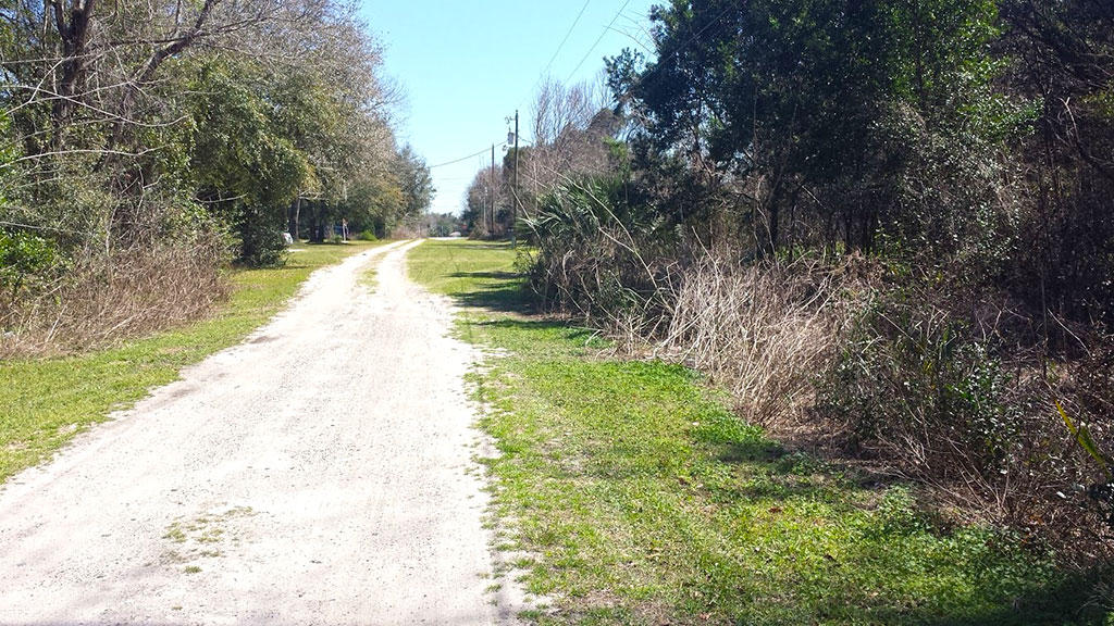 Nearly 0.25 Acres Close to Belleview - Image 2