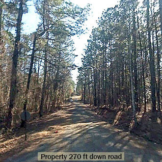 Wooded Louisiana Property Near Lake - Image 2