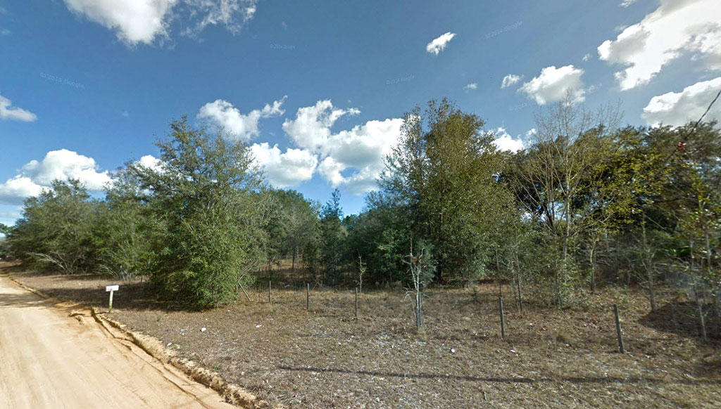Nice Fenced Yard on Putnam Avenue - Image 4