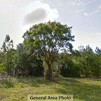 1+ Acre Florida Getaway in a Perfect Area for Boating & Fishing - Image 1