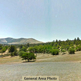 Escape to Northern California and this 2.5 Acre Refuge - Image 2