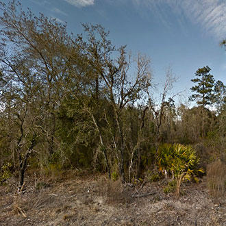 Floridian Sanctuary Away From Congestion - Image 0