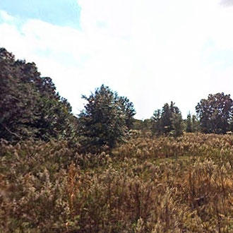 Rural lot in quiet neighborhood of Belleview - Image 0