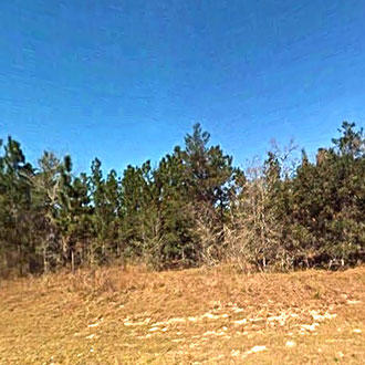 Just Over One Acre Florida Property - Image 1
