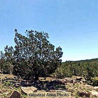 Off the Grid Land in Eastern Arizona - Image 0