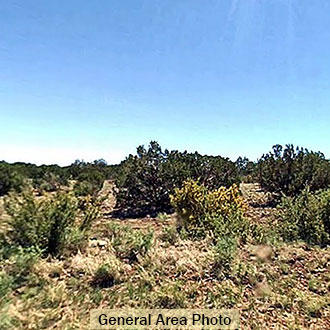 Rural agricultural property 2 hours from Flagstaff - Image 0