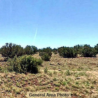 Rural agricultural property 2 hours from Flagstaff - Image 2