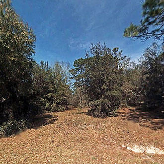 Smaller Parcel in Dunnellon's Peaceful Acres Subdivision - Image 0