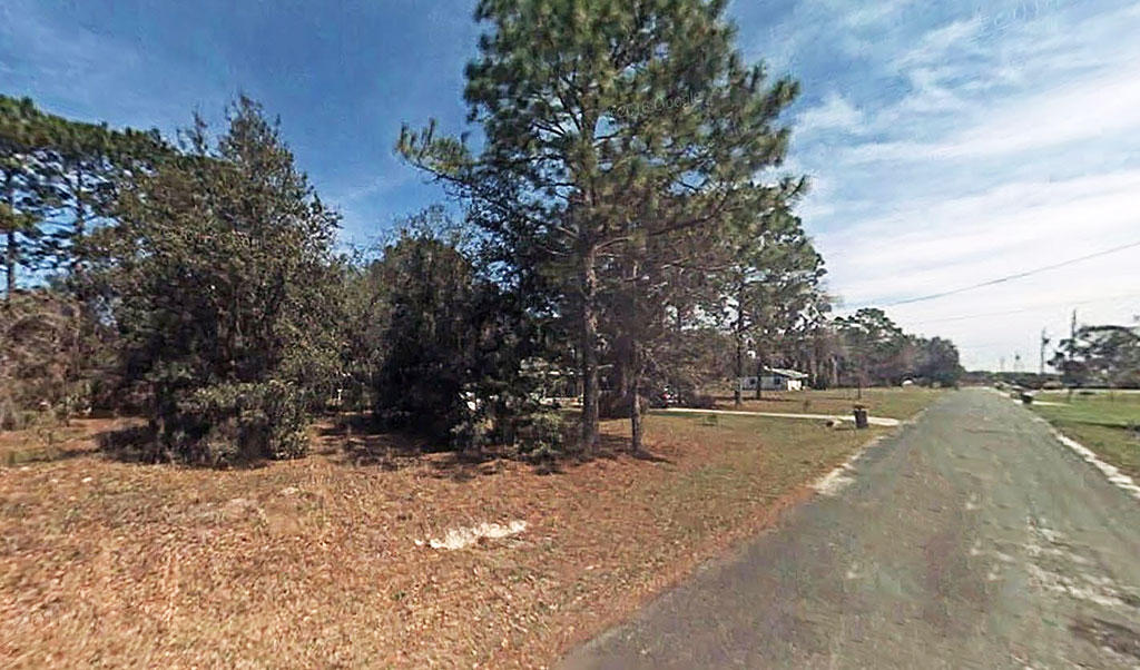 Smaller Parcel in Dunnellon's Peaceful Acres Subdivision - Image 2