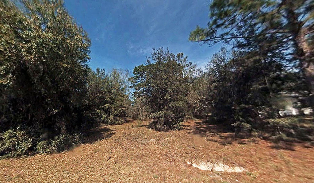 Smaller Parcel in Dunnellon's Peaceful Acres Subdivision - Image 3