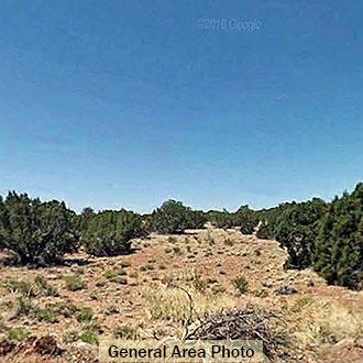 NE Arizona Gem Over an Acre in Size - Image 0