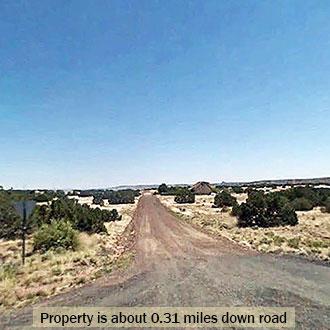 NE Arizona Gem Over an Acre in Size - Image 2