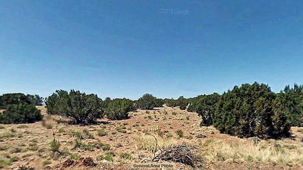 NE Arizona Gem Over an Acre in Size - Image 3