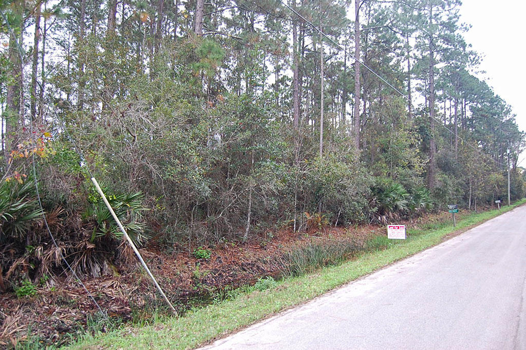 Nice Treed Property in East Palatka near St. Johns River - Image 2