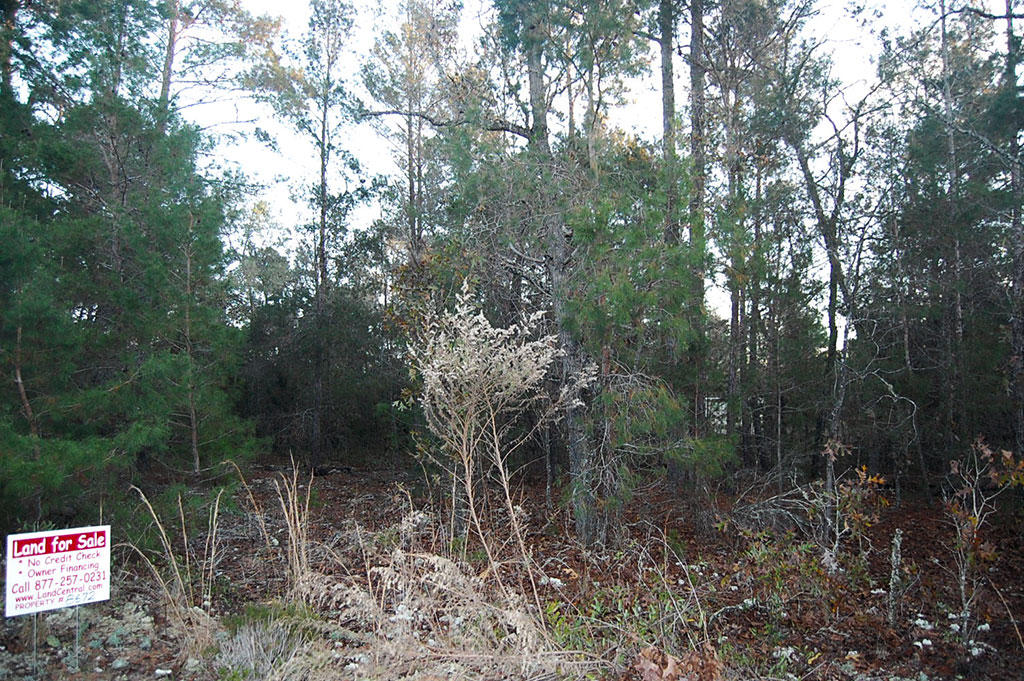 Over Half an Acre Residential Lot Near Lakes - Image 3