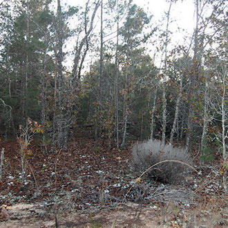 Over Half an Acre Residential Lot Near Lakes - Image 1