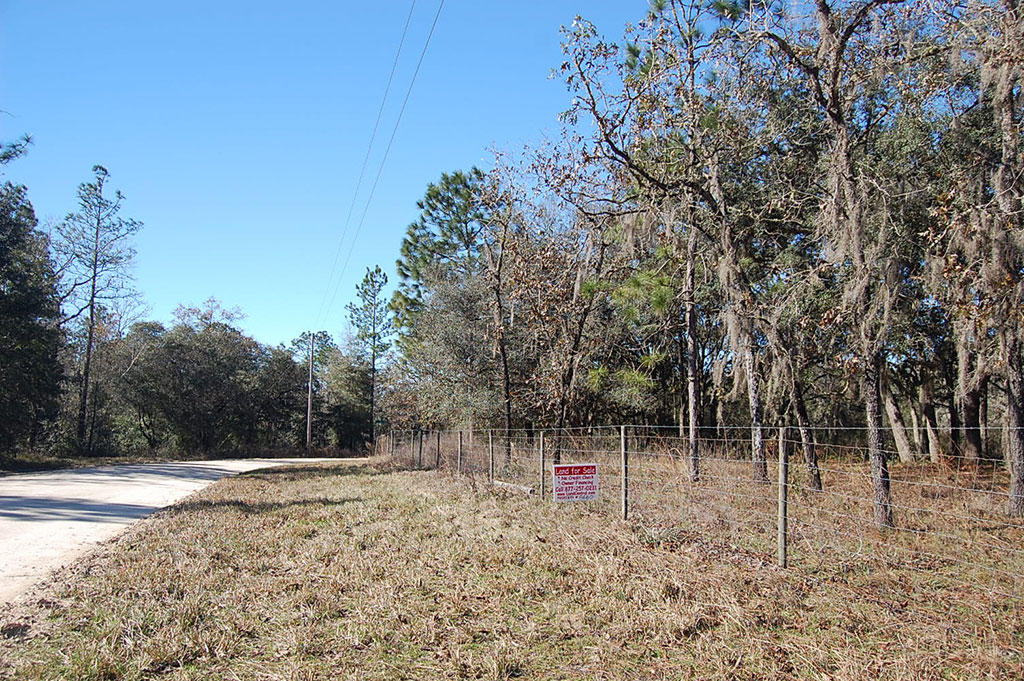Treed Lot In A Rural Residential Neighborhood - Image 3