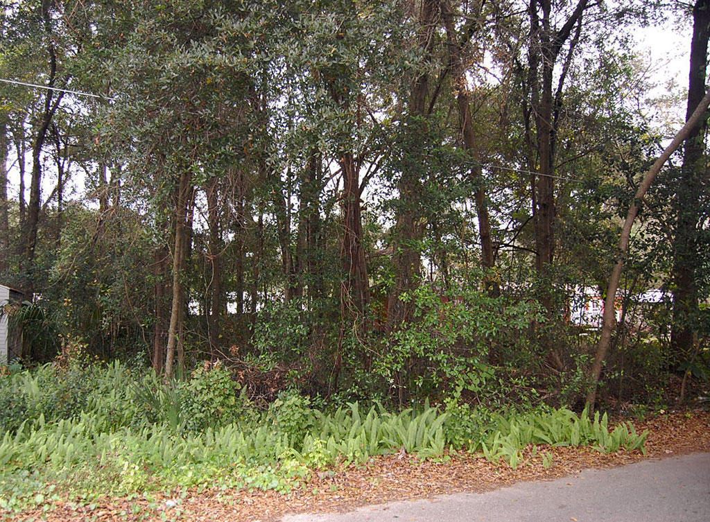 Property Near Lake Weir in Established Residential Area - Image 4