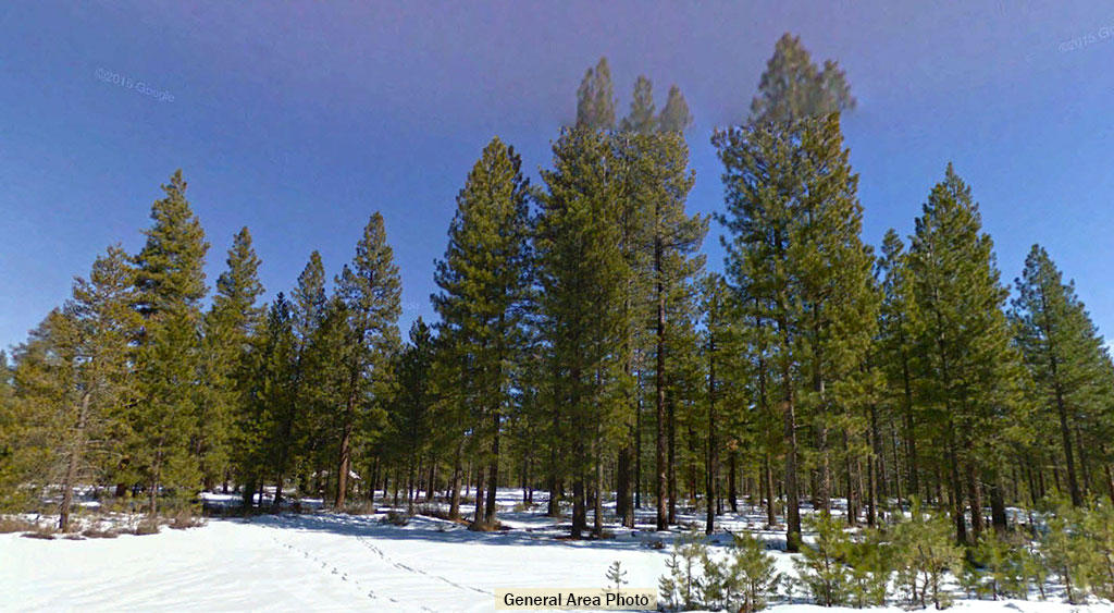 Beautiful California Property in Lassen County - Image 2