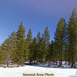 Beautiful California Property in Lassen County - Image 0