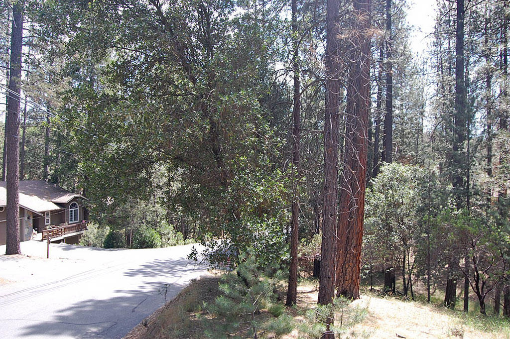 California Homesite Outside of Yosemite National Park - Image 4