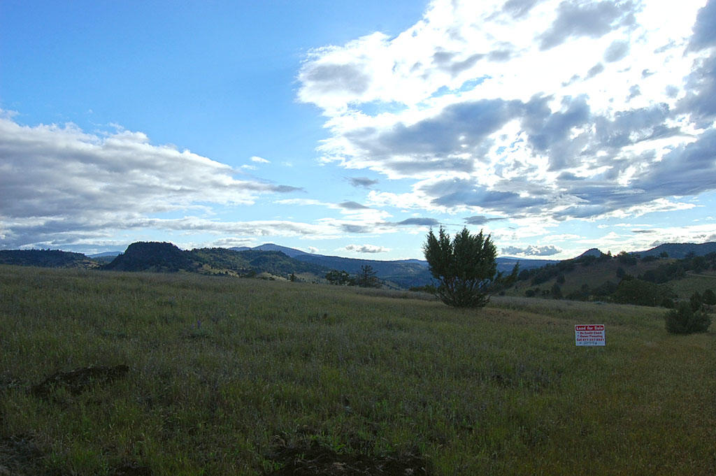 Country Acreage Just Outside of Hornbrook CA - Image 2