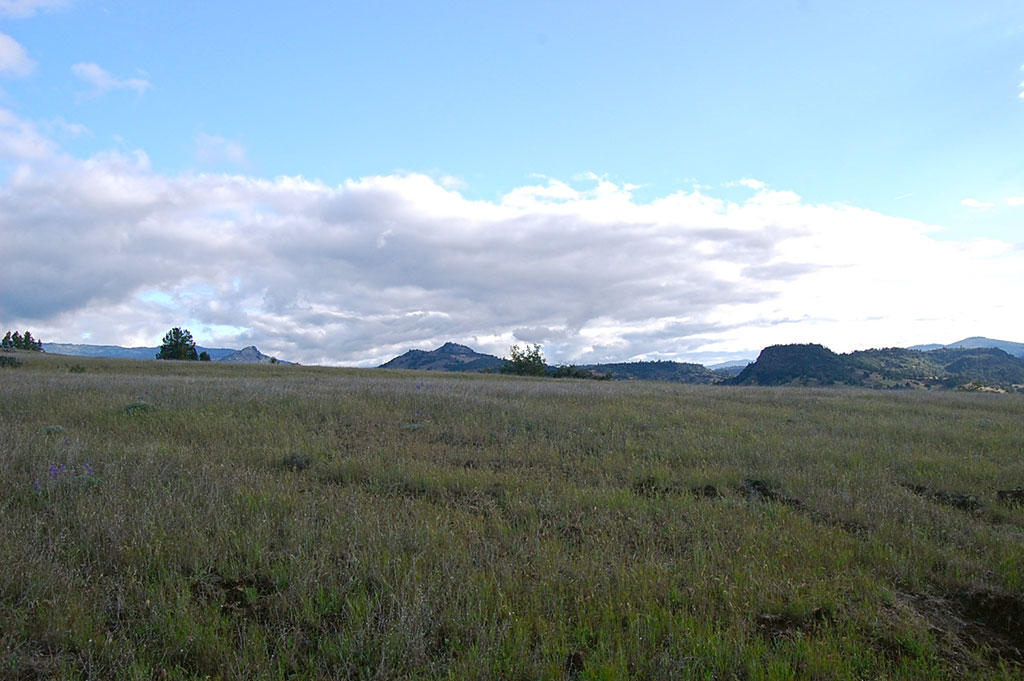 Country Acreage Just Outside of Hornbrook CA - Image 3