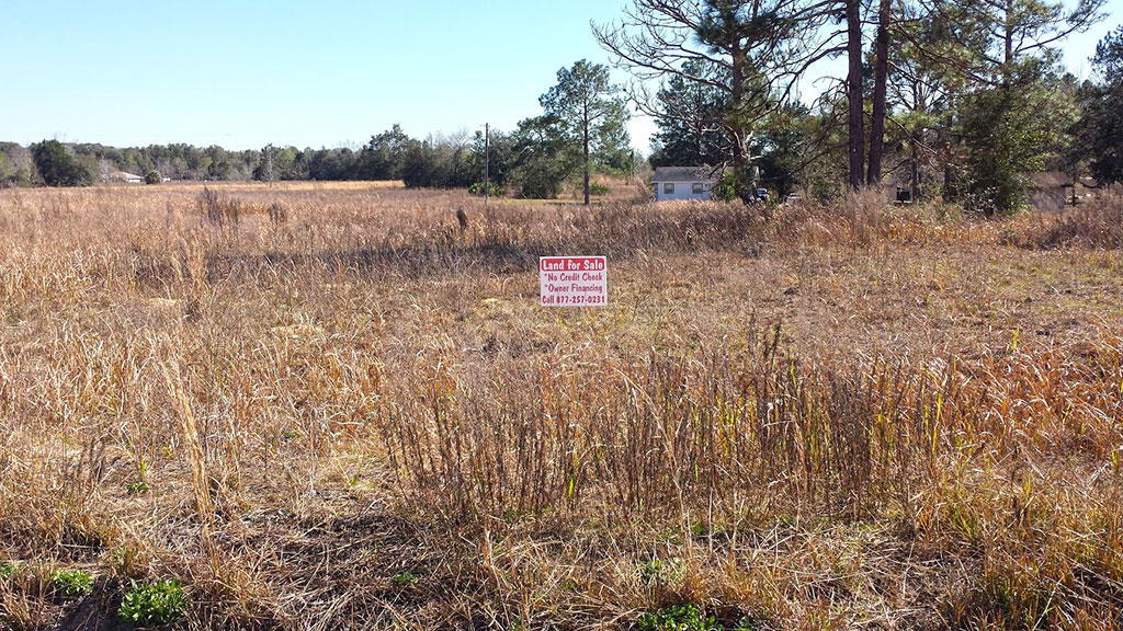 Ocala Homesite Near Horse Racing Track - Image 4